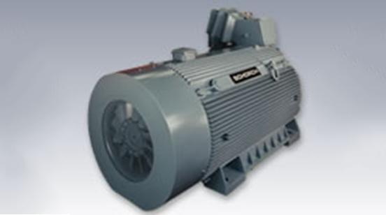 高压电机-功率可达25,000KW
